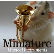 Miniature Musical Instruments (17)