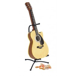 ACOUSTIC Guitar Money Box